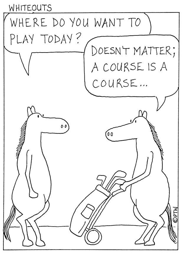10-20-14 horse course-1