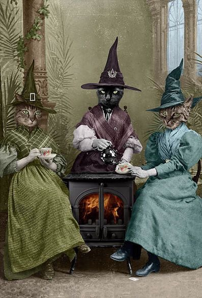 """The Witches Brew"" by Adrian Higgins"